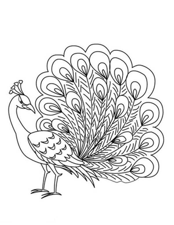 600x775 Printable Peacock Coloring Pages E Peacock, Free