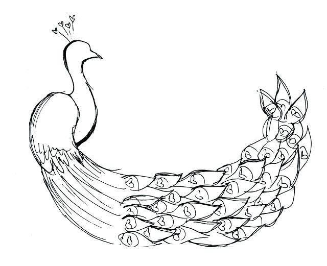 640x521 Coloring Peacock Coloring Pages Of Peacock Peacock Coloring Pages