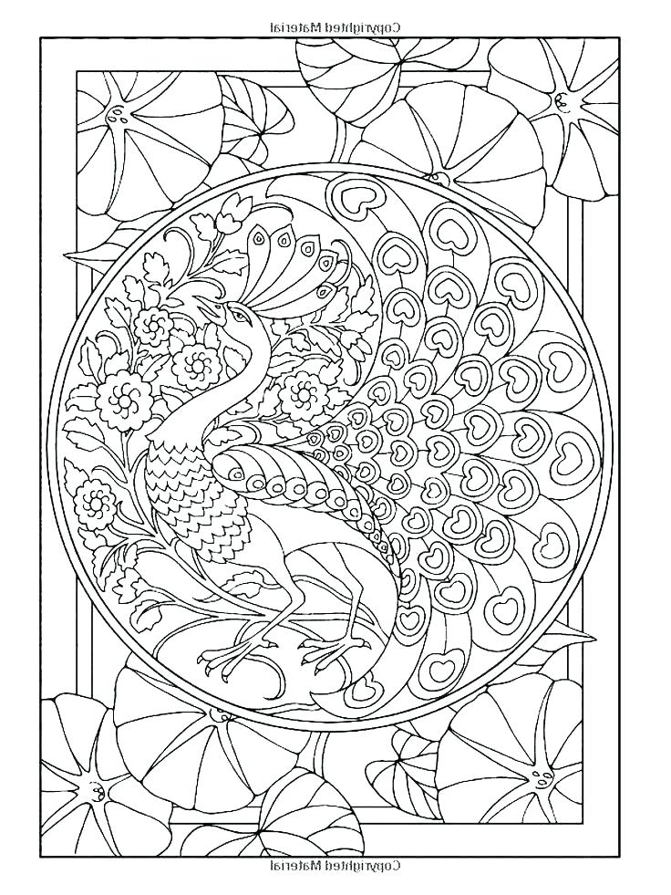 Peacock Coloring Pages For Adults At Getdrawings Free Download