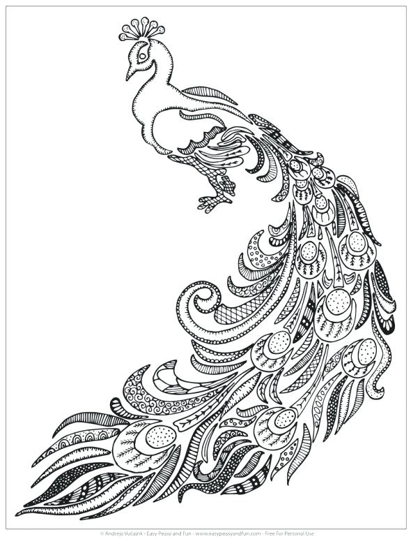 590x772 Peacock Coloring Pages Peacock Coloring Es For Adults Free