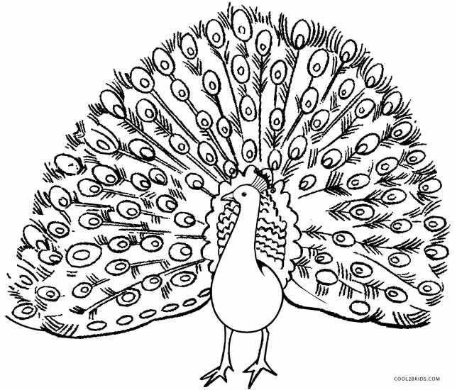 644x550 Peacock Coloring Pages Peacock Coloring Pages Printable Peacock