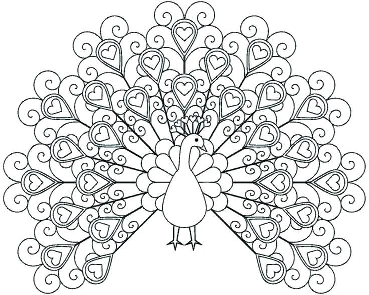 736x588 Peacock Coloring Pages Printable Cute Elegant Girls Color