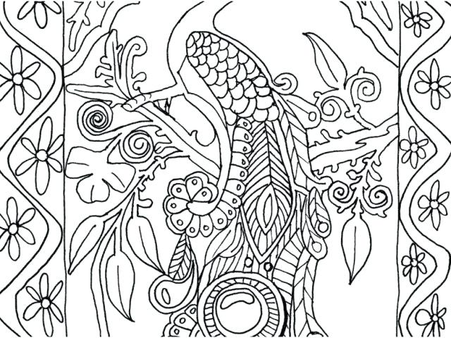 640x480 Peacock Coloring Pages To Print