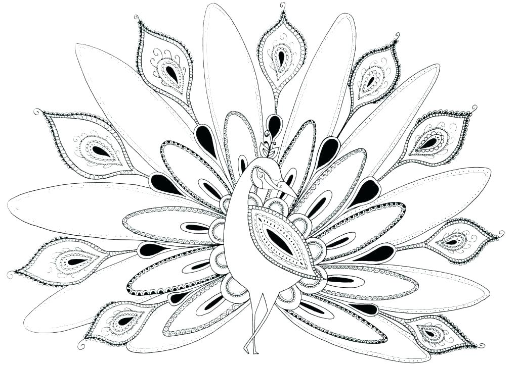 1024x725 Hard Coloring Pages Printable Peacock Coloring Pages To Print New