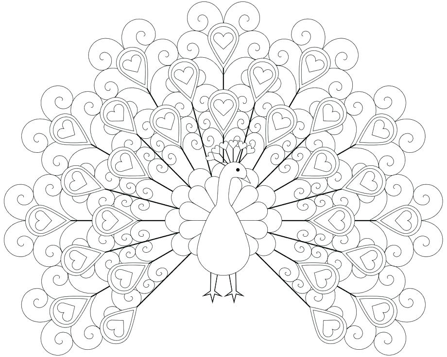 920x736 Feather Coloring Pages Peacock Color Page Printable Peacock