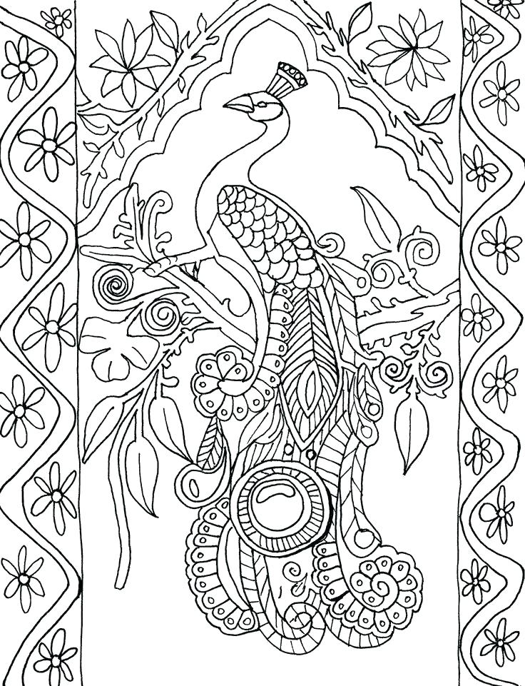 736x961 Peacock Coloring Pages Peacock Feather Coloring Page Peacock