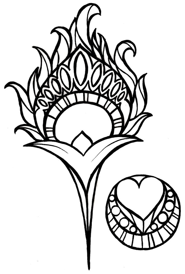 736x1088 Peacock Feather Coloring Page