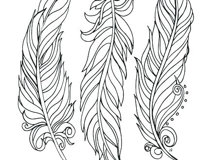 440x330 Peacock Feather Coloring Page Littlest Pet Shop Ring Pages Peacock