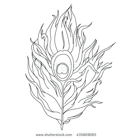450x470 Peacock Feather Outline Tattoo Printable Coloring Feather Coloring