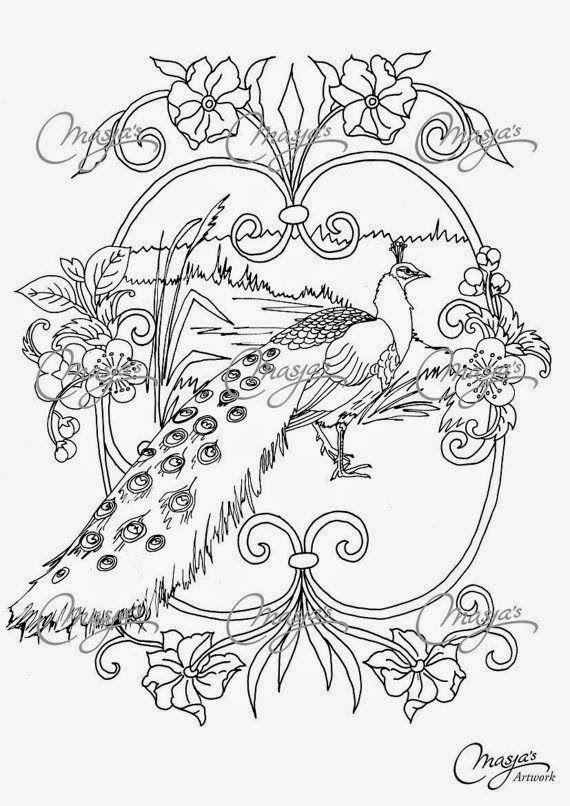 570x806 Pour Les Amoureuses De Paons Birds Of A Feather