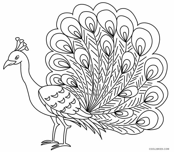 600x524 Printable Peacock Coloring Pages For Kids