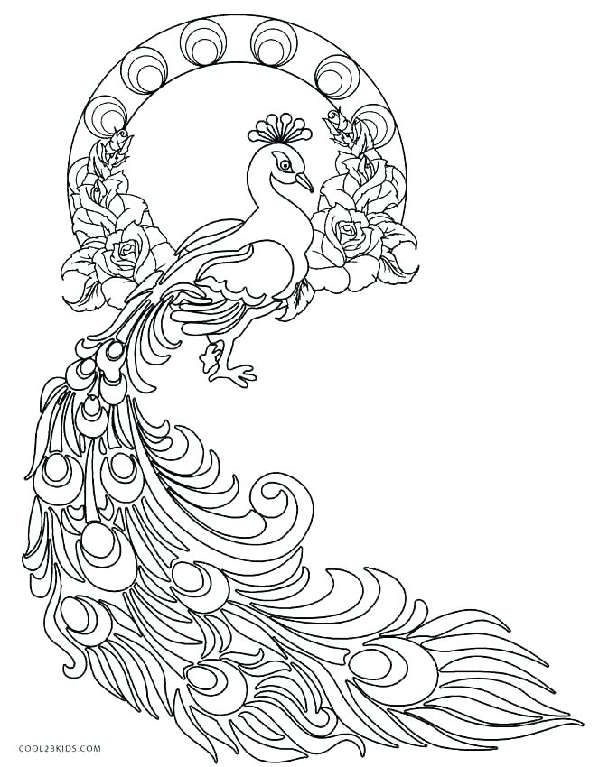 663x850 Feather Coloring Get The Coloring Page Feather Peacock Feather