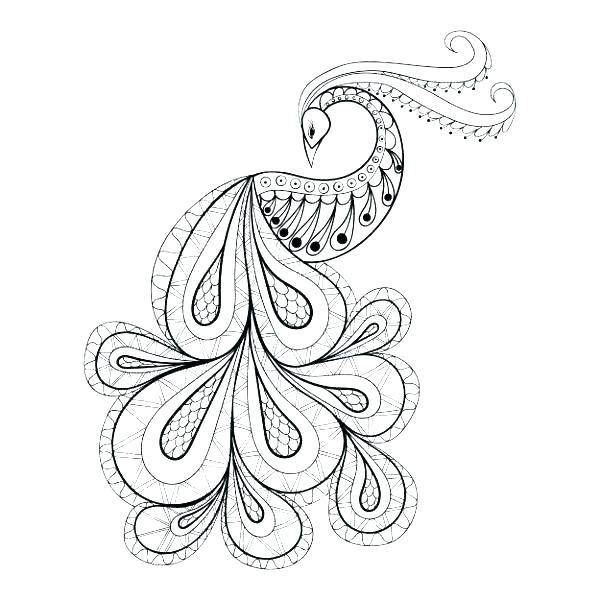 600x600 Feather Coloring Page Peacock Feather Coloring Page Peacock