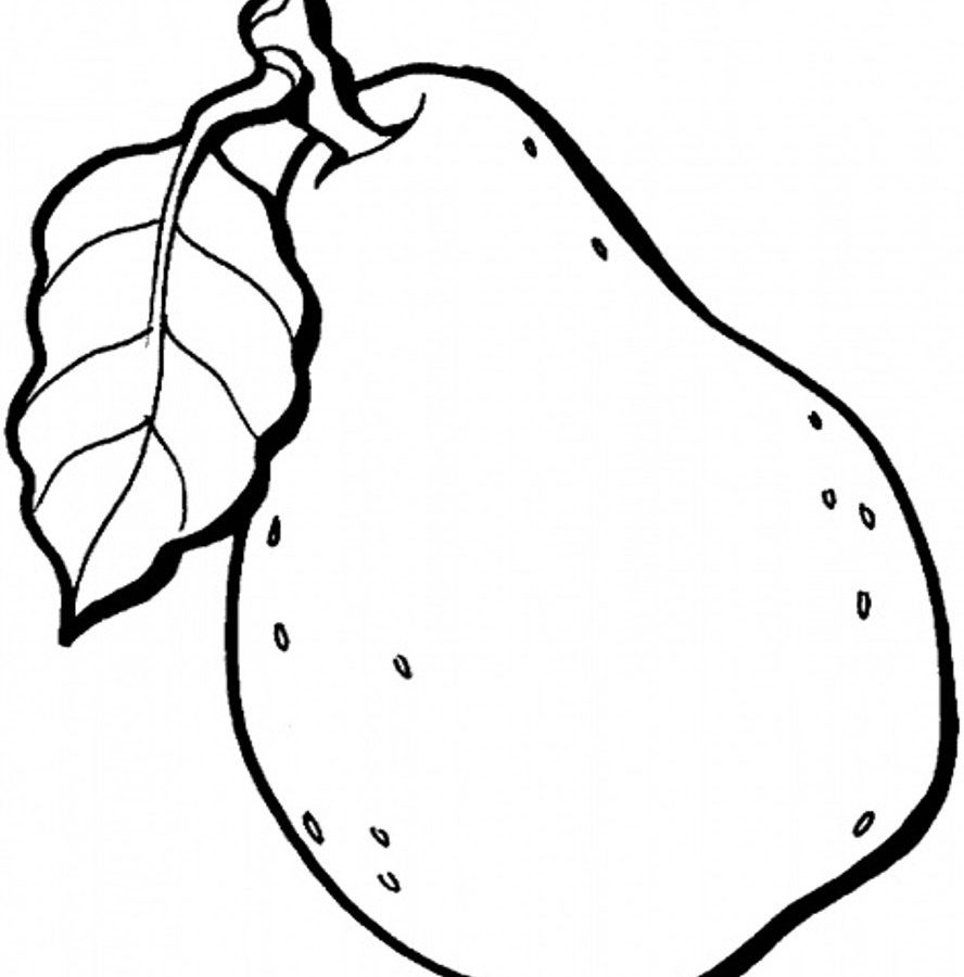 888x900 Fruits Coloring Pages Printable Httpprocoloring Of Fruit For Kids