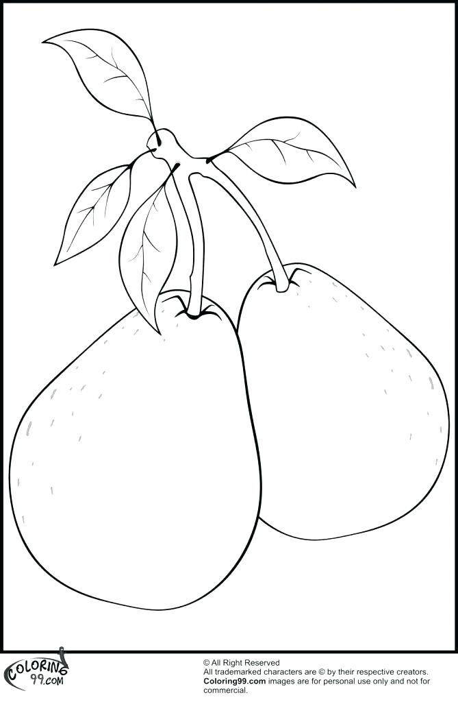669x1024 Pear Coloring Page Pear Coloring Page Free Printable Two Pears