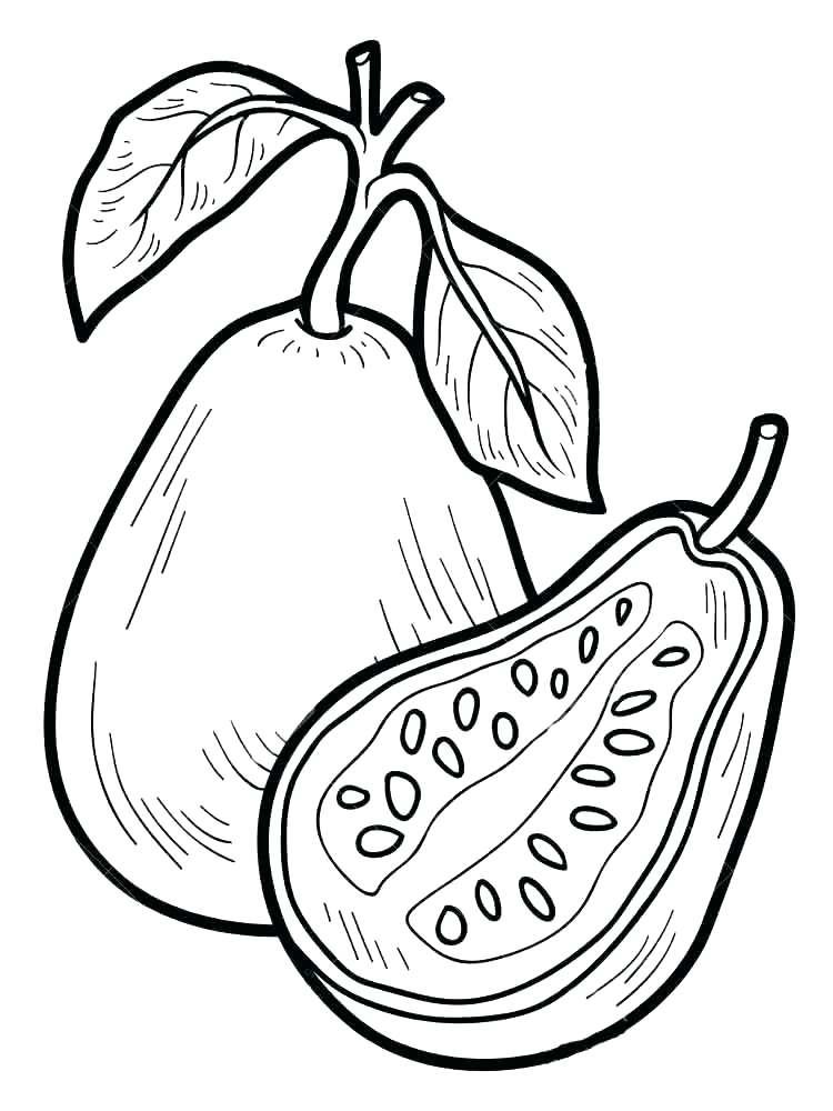 750x1000 Pear Coloring Page Pear Coloring Page Pear Coloring Page Guavas