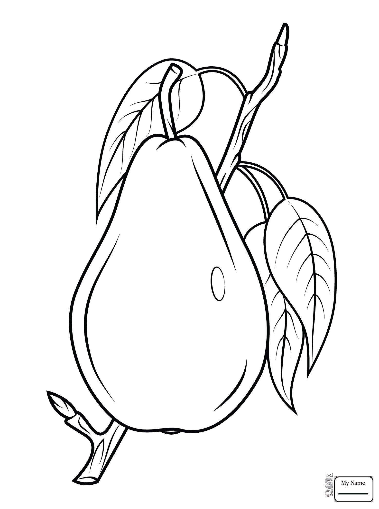 1557x2087 Fresh Pear Fruit Coloring Pages Design Printable Coloring Sheet