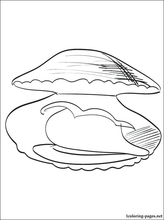 560x750 Clam Coloring Pages For Toddlers Clam Coloring Page Clam