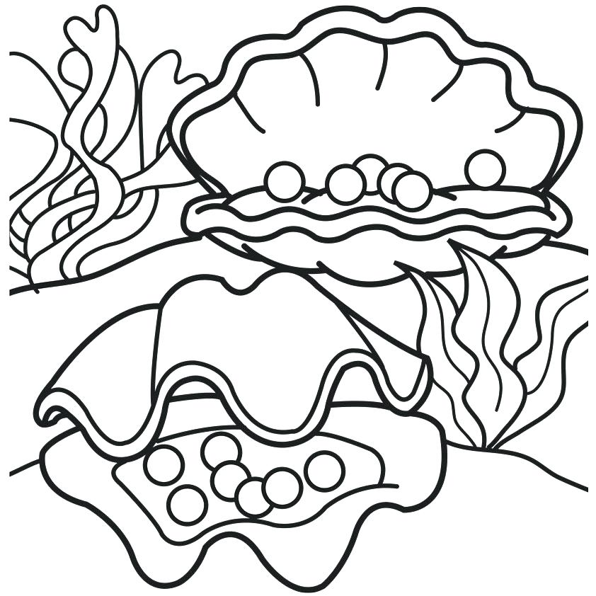 842x842 Clam Coloring Page Giant Gecko Lizard Coloring Pages Open Clam