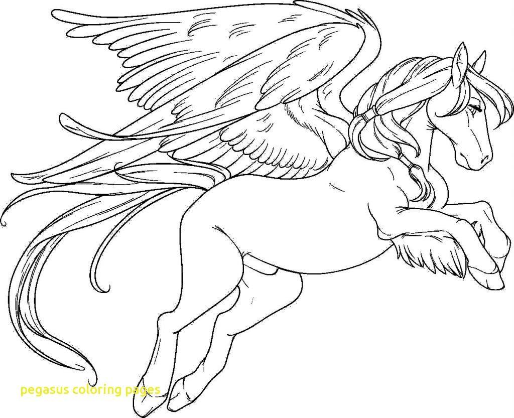 1024x833 Pegasus Coloring Pages
