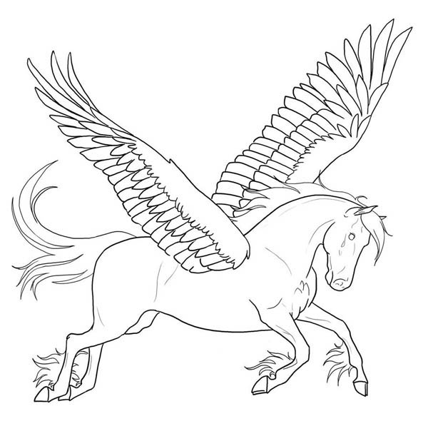 600x597 Awesome Pegasus Coloring Page