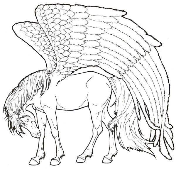 600x576 Pegasus Coloring Pages