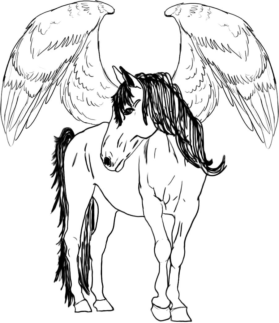 902x1043 Unique Adult Coloring Pages Pegasus Design Printable Coloring Sheet