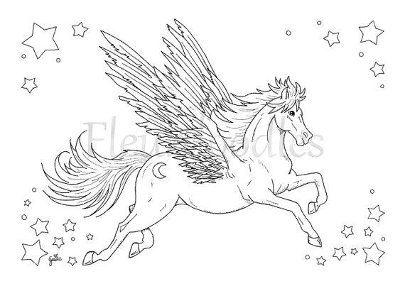 570x403 Adult Coloring Pegasus Printable Digital Download Winged