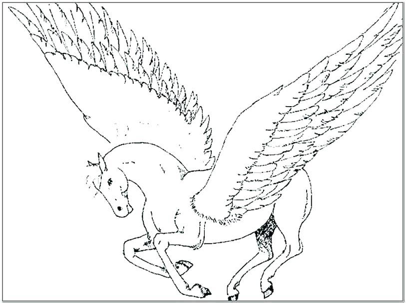 813x610 Pegasus Coloring Pages