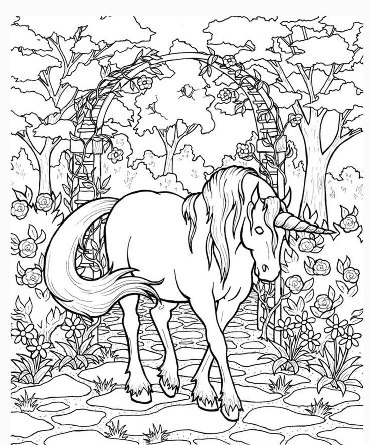 736x888 Unicorn And Pegasus Coloring Pages Icolor Horses