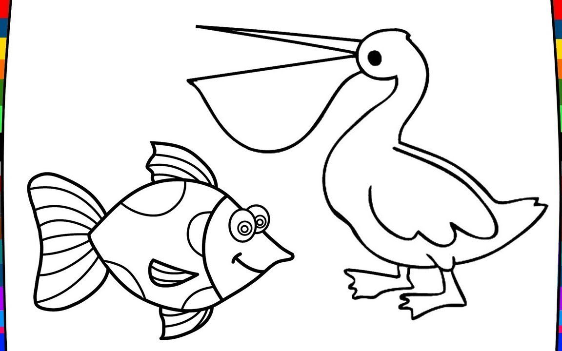 1152x720 Coloring For Kids Pelican Pages Unusual Eastern Brown Halo