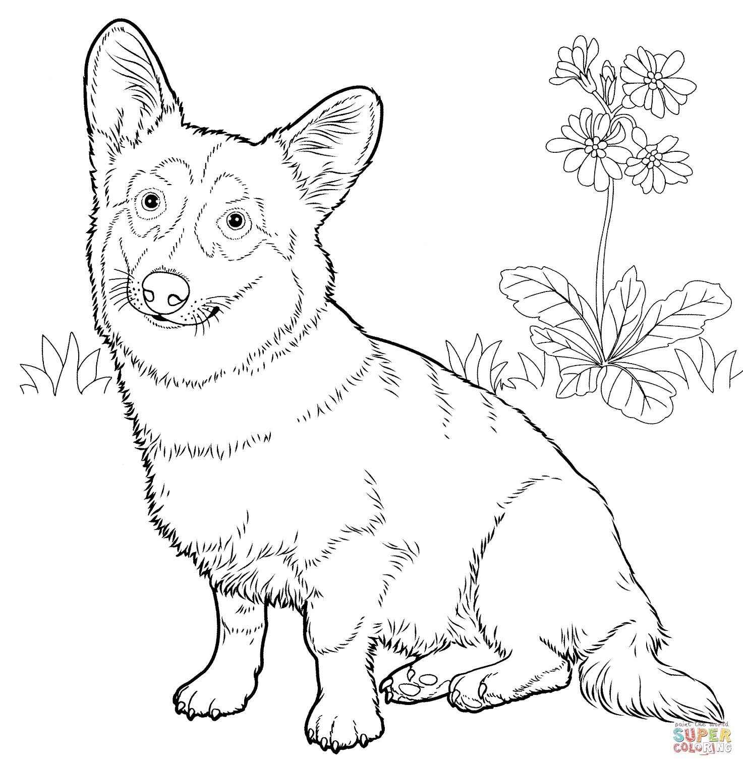 1473x1519 Pembroke Welsh Corgi Coloring Pages Collection Coloring For Kids