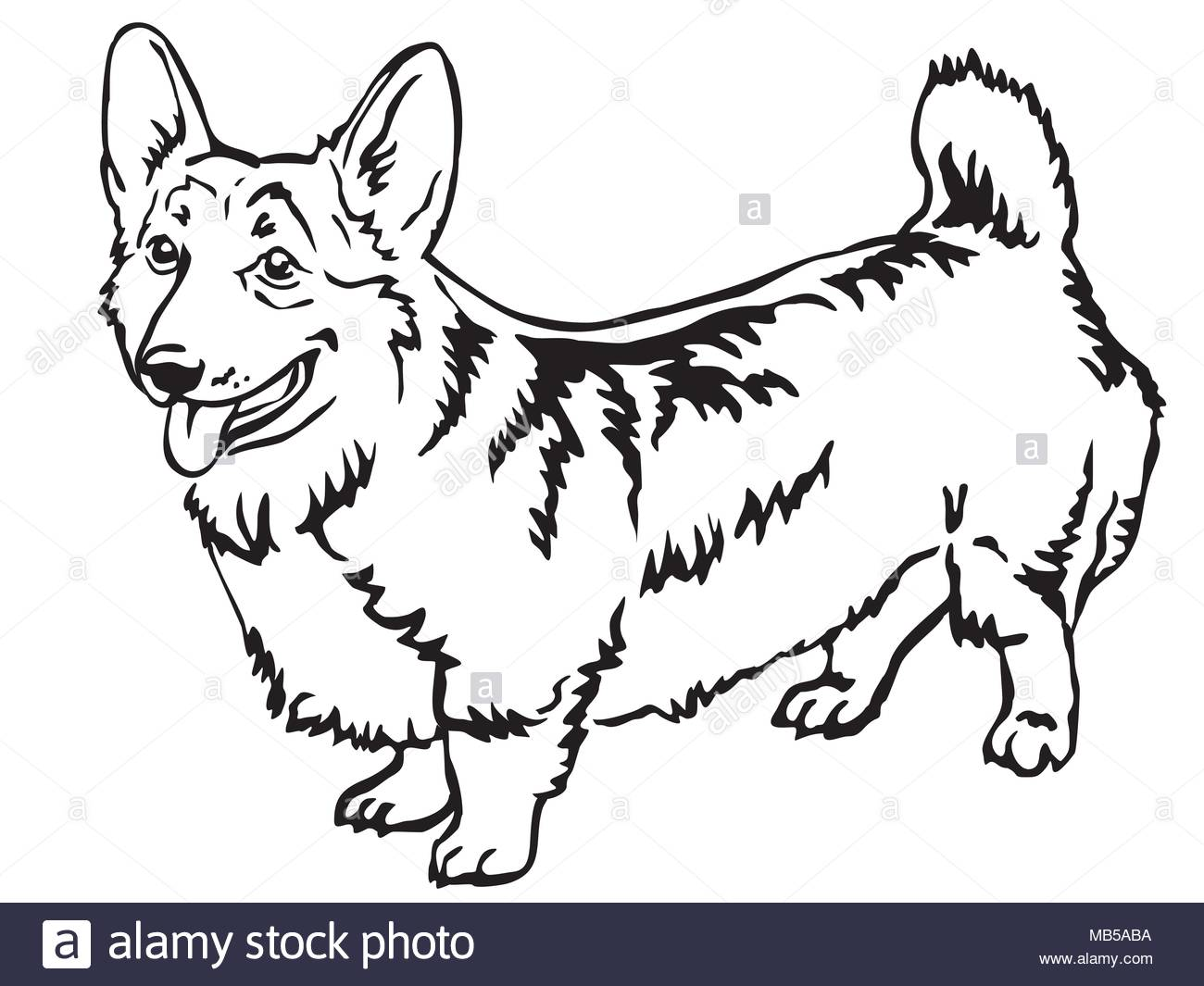 1300x1065 Pembroke Welsh Corgi Cut Out Stock Images Pictures