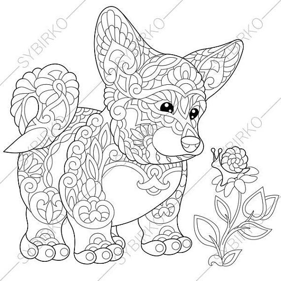 570x570 Welsh Corgi Dog Coloring Pages For National Pet Day