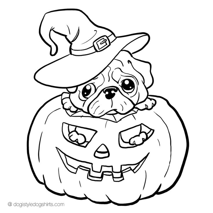736x736 Pug Pictures To Color Best Coloring Or Pencil Coloring Images