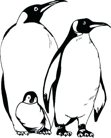 360x449 Emperor Penguin Coloring Page Coloring Pages Of Penguins Penguin