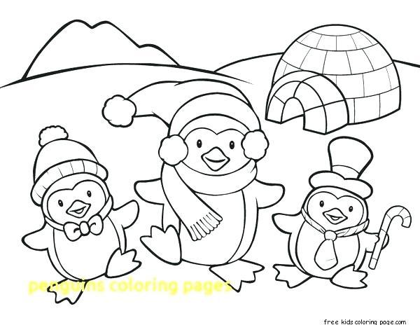 600x464 Penguin Color Page Preschool Penguin Color Page