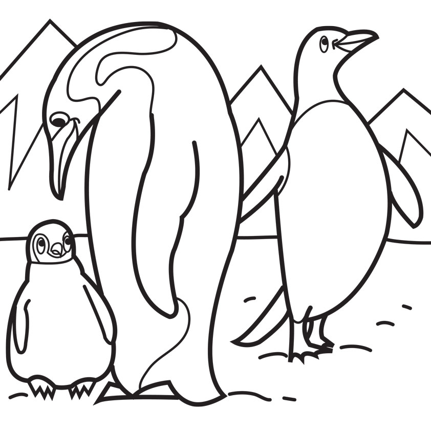 842x842 Penguin Coloring Pages To Print Preschool Humorous Page Image