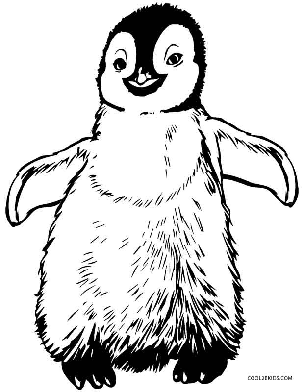 620x800 Printable Penguin Coloring Pages For Kids