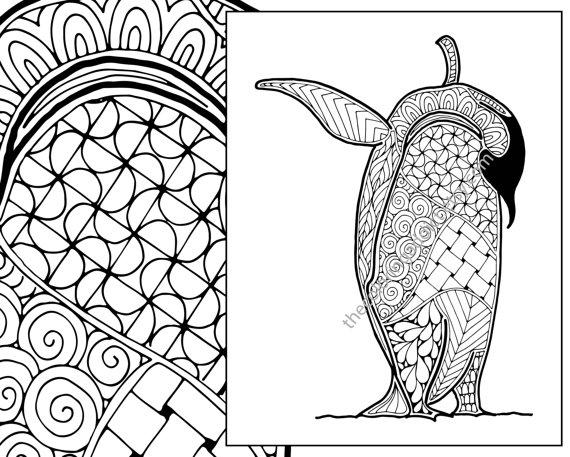 570x457 Penguin Coloring Sheet Animal Coloring Pdf Zentangle