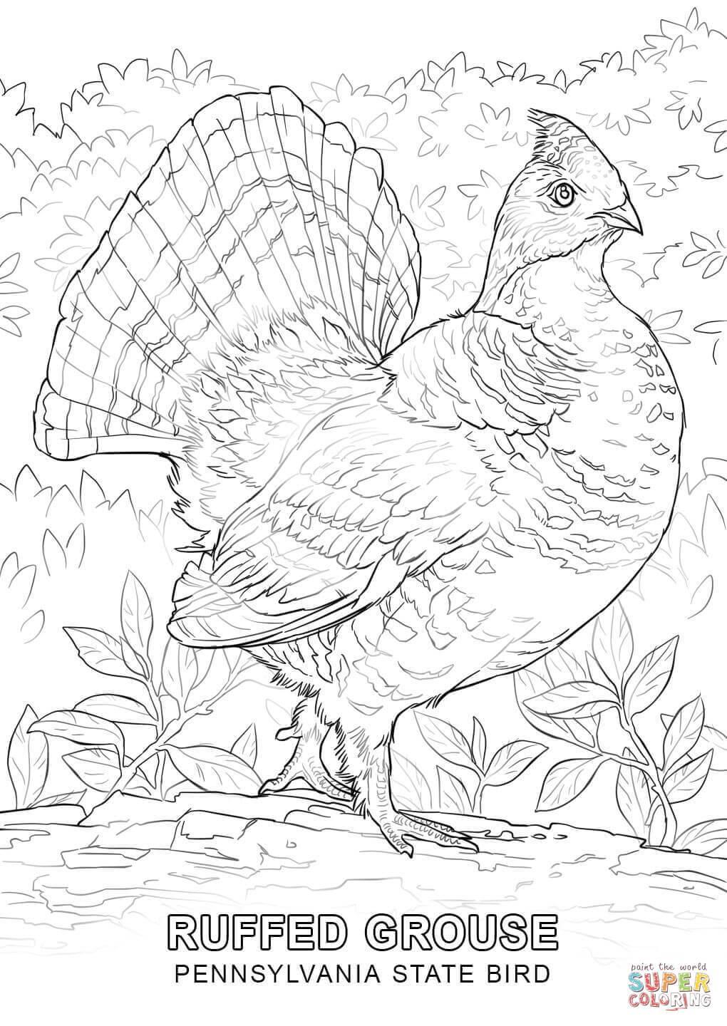 Pennsylvania Coloring Pages