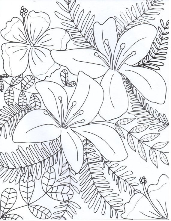 570x738 Drawn Bottle Coloring Page