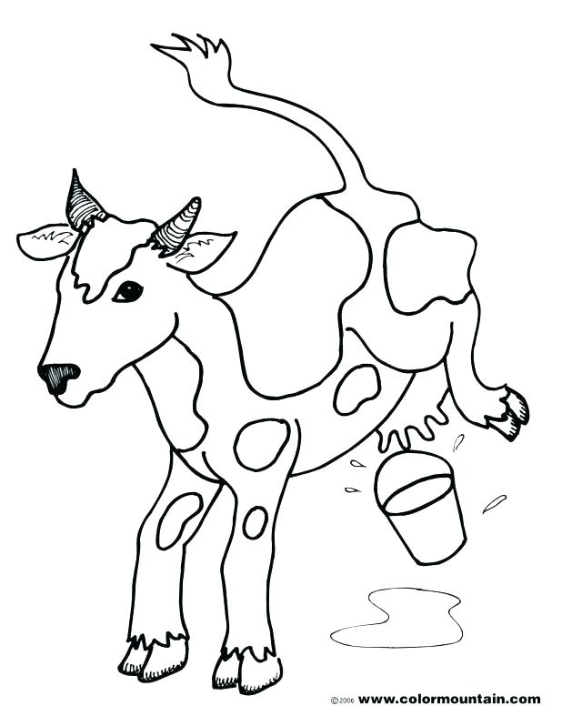 618x787 Cow Coloring Pages Cow Coloring Pages Coloring Pages Printable