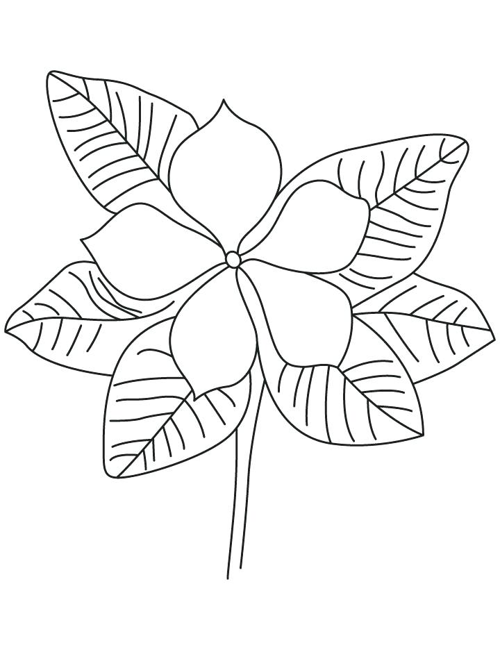 720x936 Purple Coloring Pages