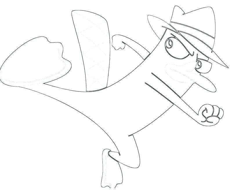 The best free Platypus coloring page images. Download from ...