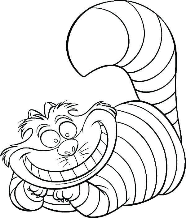 600x705 Cat Color Picture Click Image For More Cat Color Cheshire Cat