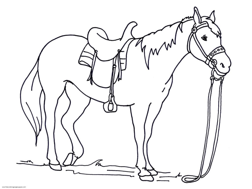 1024x768 Horse Head Coloring Pages To Print, Horse Head Coloring Pages