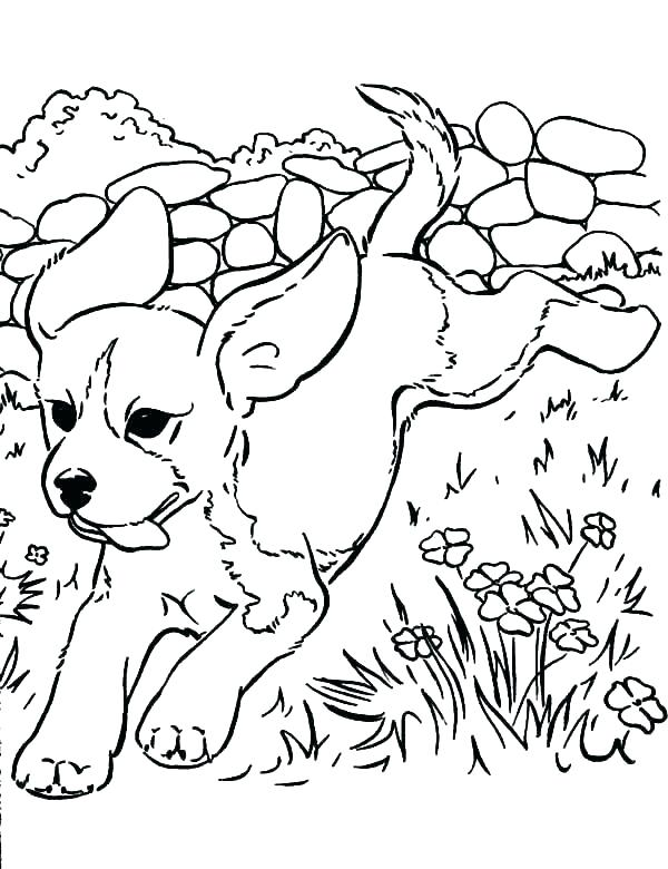600x780 Puppy Coloring Puppy Printable Puppy Coloring Pages For Kids Free