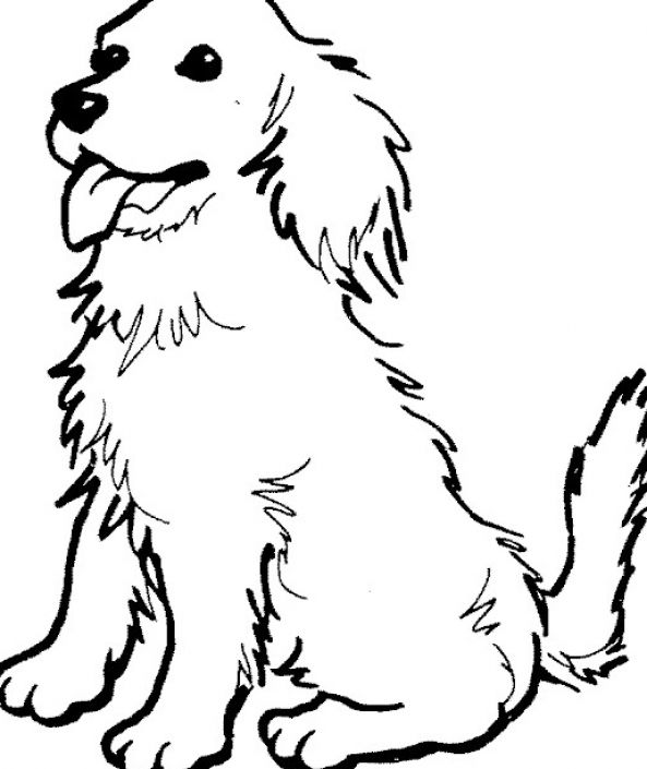 593x705 Printable Dog Printable Coloring Pages Of Dogs Free Printable