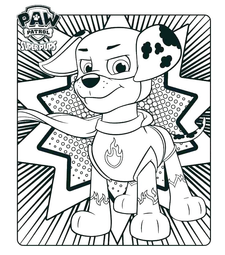 736x833 Skye Paw Patrol Coloring Pages